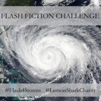 #Flash4Storms | My First [And Perhaps Last] 50-Word Flash Fiction Story